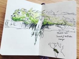 2018. Iguane vert au zoo de Lille.